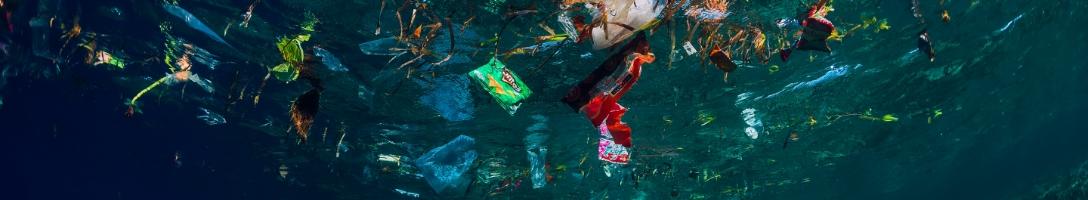 マイクロプラスティック汚染